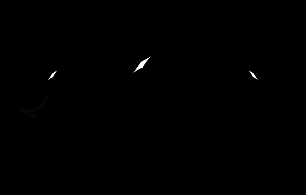 FT-hydra-logo-black